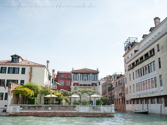 Venedi